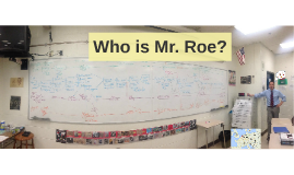 Who is Mr. Roe?