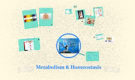 Metabolism & Homeostasis