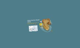 Chinese Maritime Dispute Policies