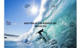 GESTION DE RIESGOS DEL PROYECTO