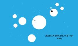 JESSICA BRICEÑO CETINA