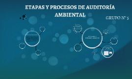 Copy of ETAPAS Y PROCESOS DE AUDITORÍA AMBIENTAL