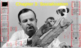 Chapter 3 : Socialization