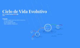 Copy of Ciclo de Vida Evolutivo