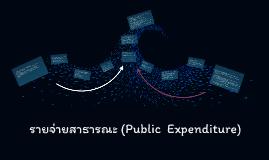 รายจ่ายสาธารณะ (Public  Expenditure)