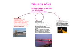 TIPUS DE PONS