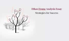 Ethan Frome Analysis Essay