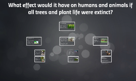 What effect would it have on humans and animals if all trees