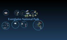 Everglades National Park --> dicertación