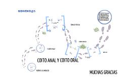 COITO ANAL Y COITO ORAL
