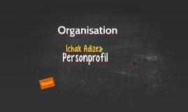 Organisation - adizes paei