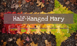 Copy of Half-Hanged Mary