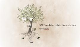 SMT210 Internship Presentation