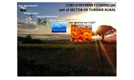 CURS INTERNET COMERCIAL per al SECTOR DE TURISME RURAL