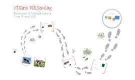 Utsira Villsaulag