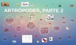ARTRÓPODES, PARTE 2