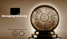 CH5: Managing Diversity
