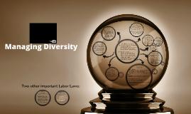 CH5: Managing Diversity