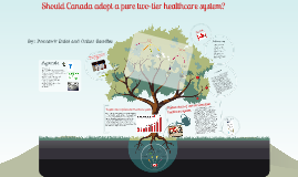 Copy of Should Canada Adopt a pure two-tier health care system?
