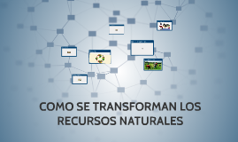Copy of COMO SE TRANSFORMAN LOS RECURSOS NATURALES
