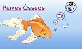 Copy of Peixes Ósseos