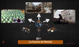 La Guerra de Bosnia (1992-1995)
