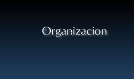 Copy of Organizacion
