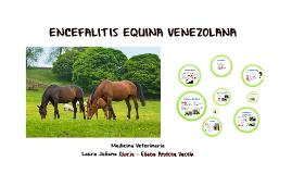 ENCEFALITIS EQUINA VENEZOLANA