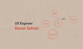 UX Engineer