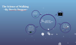 Copy of The Science of Walking