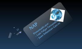 Copy of Copy of Exposicion redes