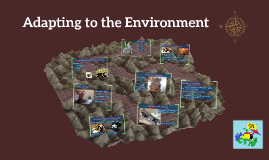 KS1 & 2 Adapting to the Environment