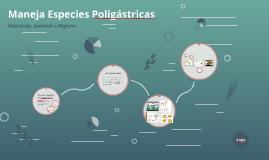 Maneja Especies Poligástricas