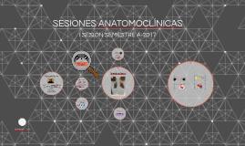 SESIONES ANATOMOCLÍNICAS