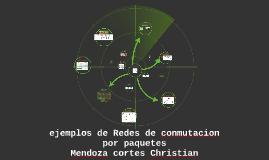 Redes de conmutacion por paquetes