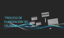 """""""PROCESO DE ELABORACION DEL SALAMIN"""""""