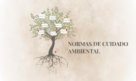 NORMAS DE CUIDADO AMBIENTAL