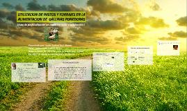 Copy of UTILIZACION DE PASTOS Y FORRAJES COMO ALTERNATIVA DE ALIMENT