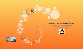 Team 1: A Cause For Paws