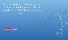 Micronucleous test in fish genome: A sensitive monitor for a