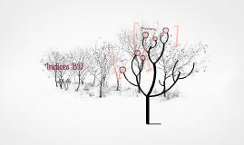 Índices - IS163 (6)