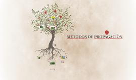 MÈTODOS DE PROPAGACIÒN