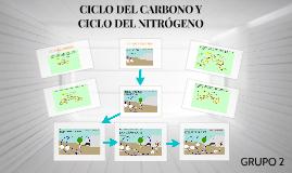 Copy of CICLO DE CARBONO Y NITROGENO