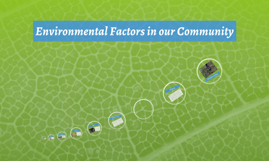 Environmental Factors in our Community