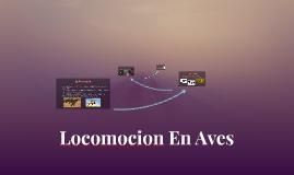 Copy of Locomoción En Aves