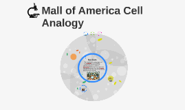 cell analogy mall