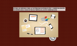 Copy of Presentacion Mercado