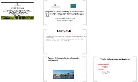 Posgrado en Chile: Desafíos y problemáticas de la formación e inserción de investigadores en Chile