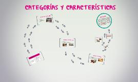 Copy of CATEGORIA DE HOTELES Y CARACTERISTICAS