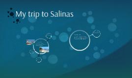 My trip to Salinas